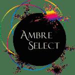 Logo du centre de formation Ambre Select